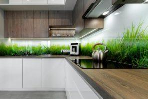חיפוי זכוכית למטבח דשא דגם 504