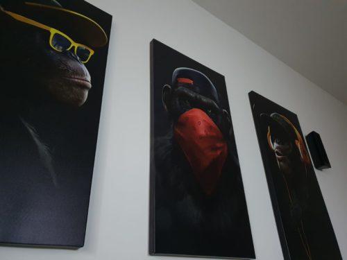שלושת הקופים - סט תמונות זכוכית לבית דגם 55100-36 photo review