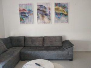 סט תמונות לסלון נוצות נורדיות במשרד הדפסה על זכוכית דגם 2340892 photo review