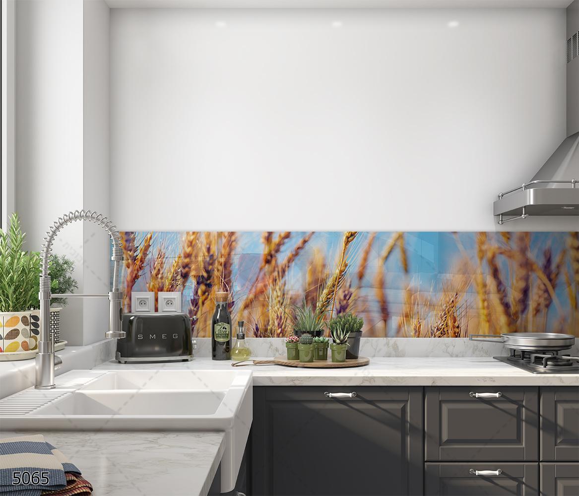 חיטה מזהב על רקע שמיים כחולים חיפוי זכוכית למטבח דגם 5065