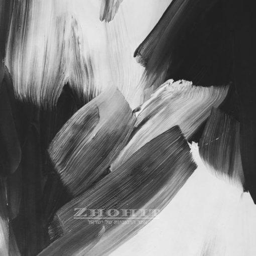 אבסטרקט בשחור לבן - חיפוי זכוכית לקיר טלויזיה או למטבח דגם 5167